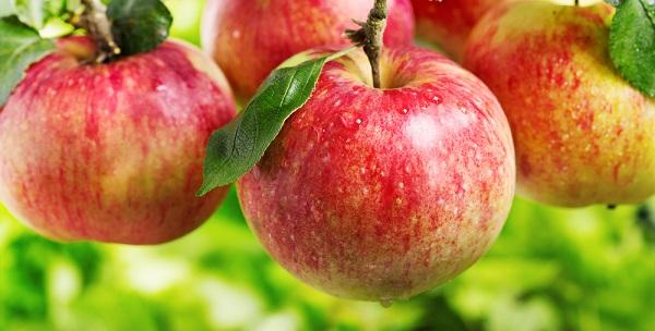 simpatia da maçã de amor viva sempre ao meu lado